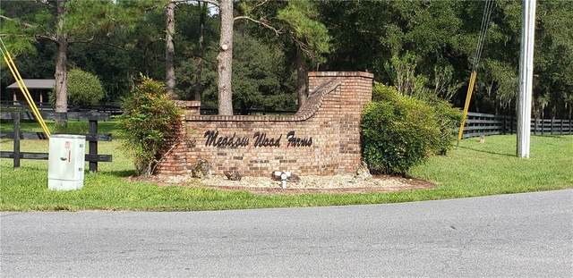 TBD E Lake View Drive, Ocala, FL 34482 (MLS #OM614340) :: Lockhart & Walseth Team, Realtors