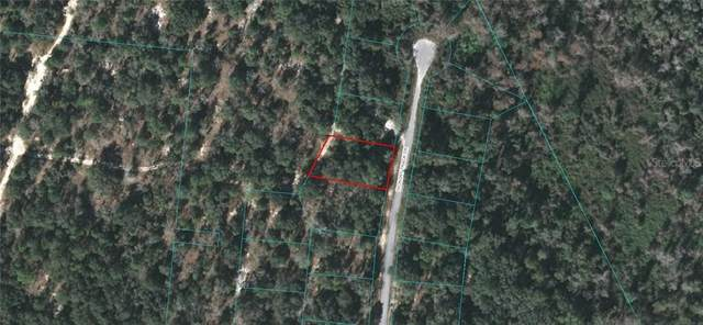Hickory Track Drive, Ocala, FL 34472 (MLS #OM614467) :: New Home Partners