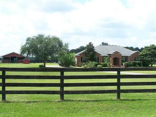 6730 NW 83RD Terrace, Ocala, FL 34482 (MLS #OM614488) :: Sell & Buy Homes Realty Inc