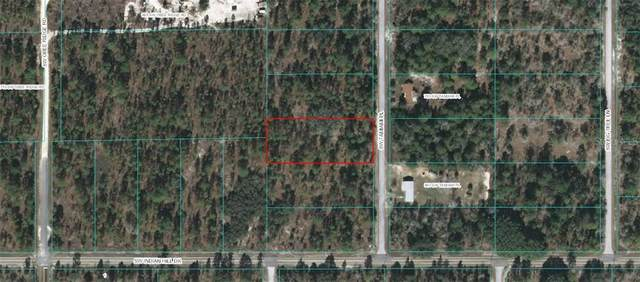TBD SW Tamiami Place, Dunnellon, FL 34431 (MLS #OM614532) :: Pepine Realty