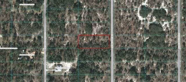 TBD SW Big Bear Ridge, Dunnellon, FL 34431 (MLS #OM614533) :: BuySellLiveFlorida.com