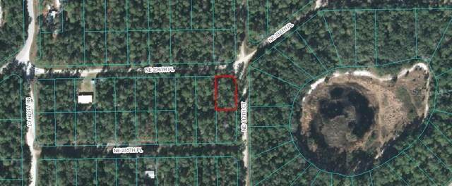 NE 236TH, Fort Mc Coy, FL 32134 (MLS #OM614602) :: BuySellLiveFlorida.com