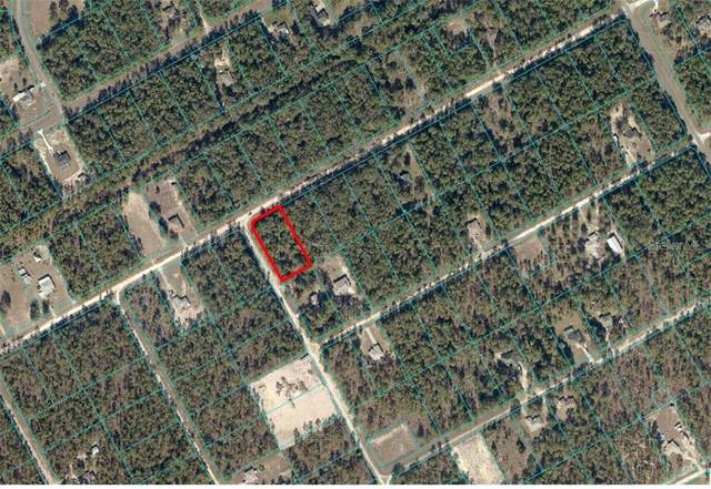 SW 133 Terrace, Ocala, FL 34481 (MLS #OM614639) :: Burwell Real Estate