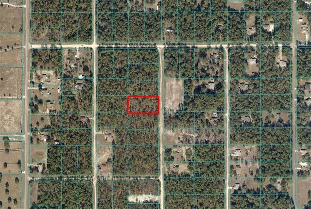 SW 137 Court, Ocala, FL 34481 (MLS #OM614644) :: Burwell Real Estate