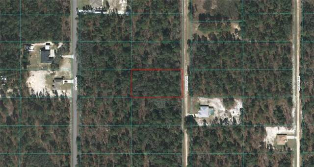 0 SW 136 TERRACE, Dunnellon, FL 34432 (MLS #OM614767) :: RE/MAX Local Expert