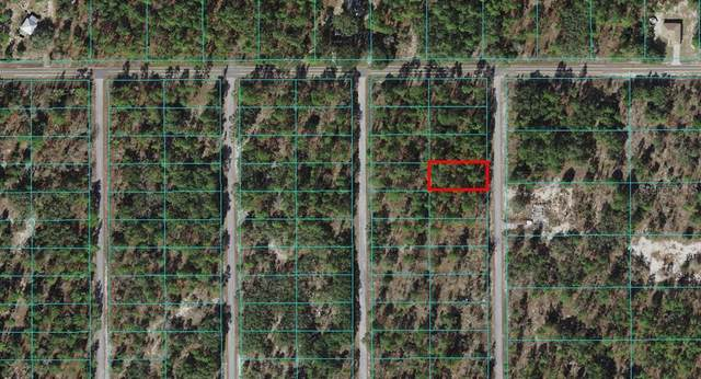 0 SW Little Cliffs Drive, Dunnellon, FL 34431 (MLS #OM614810) :: Sarasota Gulf Coast Realtors