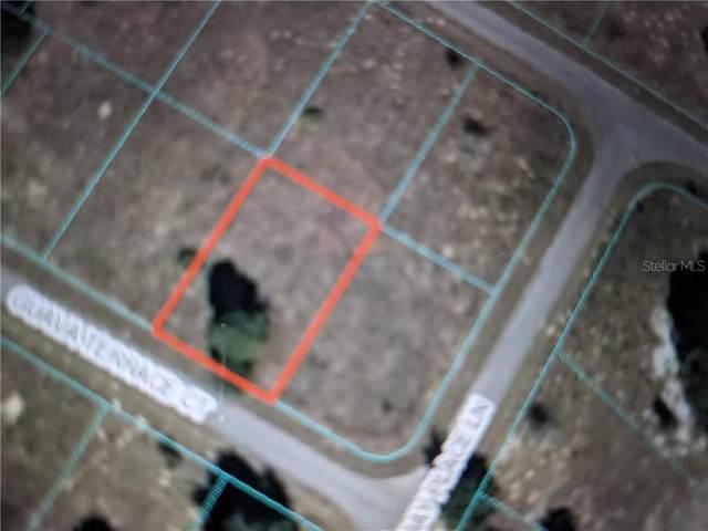 TBD Guava Terr Court, Ocklawaha, FL 32179 (MLS #OM614854) :: CGY Realty