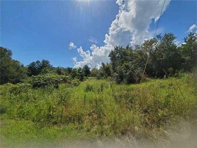 NE 96TH Street, Salt Springs, FL 32134 (MLS #OM614891) :: BuySellLiveFlorida.com