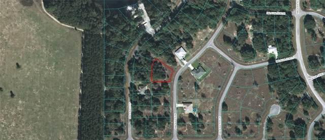 Malauka Run, Ocklawaha, FL 32179 (MLS #OM615080) :: Premium Properties Real Estate Services