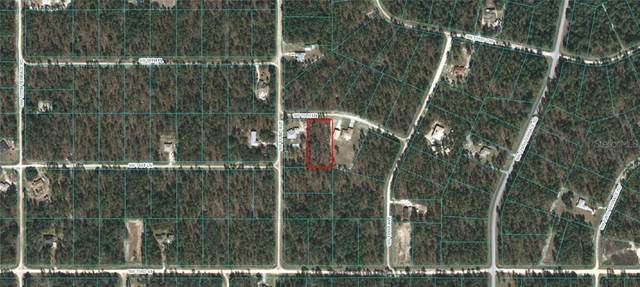 LOT 7 SW 70TH Lane, Ocala, FL 34481 (MLS #OM615173) :: BuySellLiveFlorida.com
