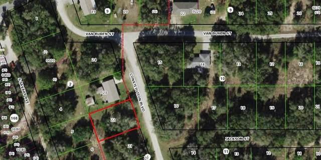 917 Constitution Boulevard, Inverness, FL 34453 (MLS #OM615250) :: Team Borham at Keller Williams Realty