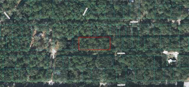 0 225TH Place, Fort Mc Coy, FL 32134 (MLS #OM615416) :: The Duncan Duo Team
