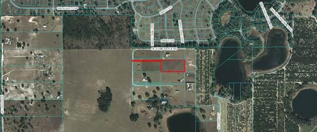 TBD SE 152ND PLACE Road, Weirsdale, FL 32195 (MLS #OM615432) :: BuySellLiveFlorida.com