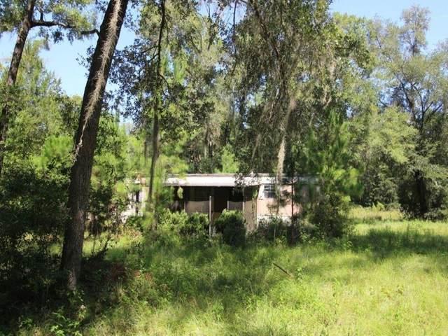 14821 NW 186 Street NW, Williston, FL 32696 (MLS #OM615602) :: Pepine Realty