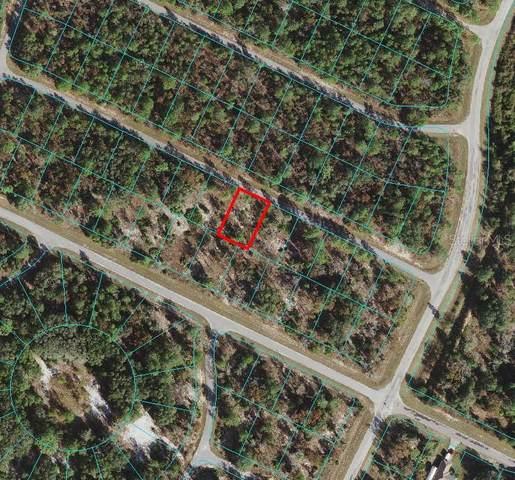 TBD Malauka Drive, Ocklawaha, FL 32179 (MLS #OM615626) :: RE/MAX Premier Properties