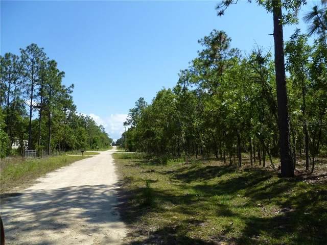 350 NE 137TH Avenue, Williston, FL 32696 (MLS #OM615627) :: Everlane Realty