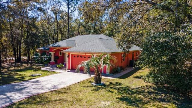 9392 N Sherman Drive, Citrus Springs, FL 34434 (MLS #OM615818) :: CGY Realty