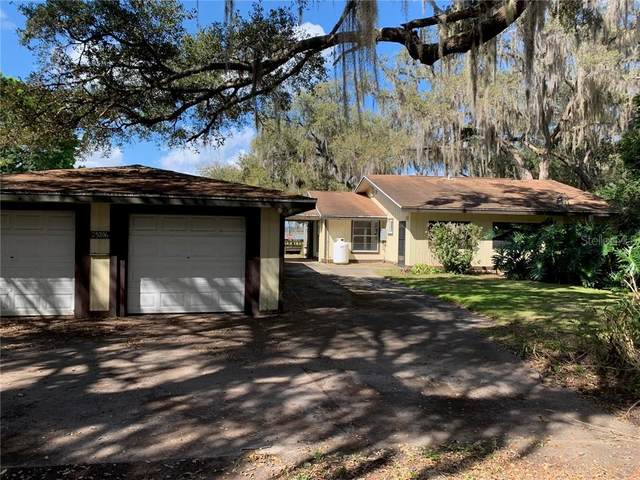 25206 E Highway 316, Salt Springs, FL 32134 (MLS #OM615854) :: Cartwright Realty