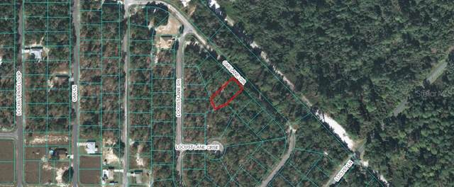 Lot 18 Oak Lane Circle, Ocala, FL 34472 (MLS #OM615866) :: Heckler Realty