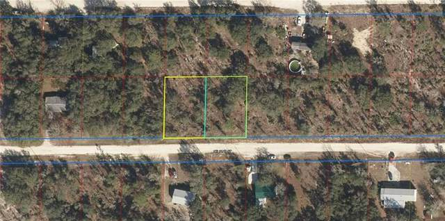 TBD NE 62ND Street, Williston, FL 32696 (MLS #OM615918) :: CGY Realty