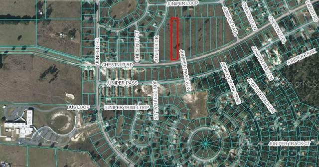 241 Chestnut Road, Ocala, FL 34480 (MLS #OM615941) :: Everlane Realty