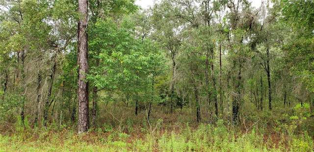 Lot 11 NE 105TH Avenue, Archer, FL 32618 (MLS #OM616018) :: Memory Hopkins Real Estate