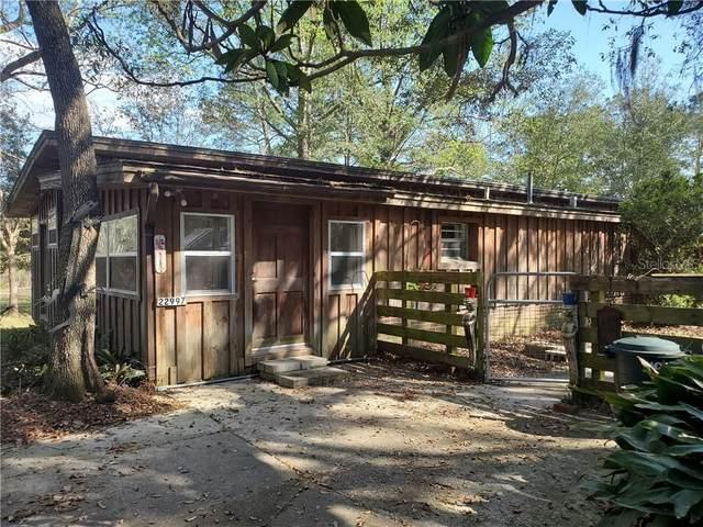22997 NE 130TH COURT Road, Fort Mc Coy, FL 32134 (MLS #OM616079) :: The Robertson Real Estate Group