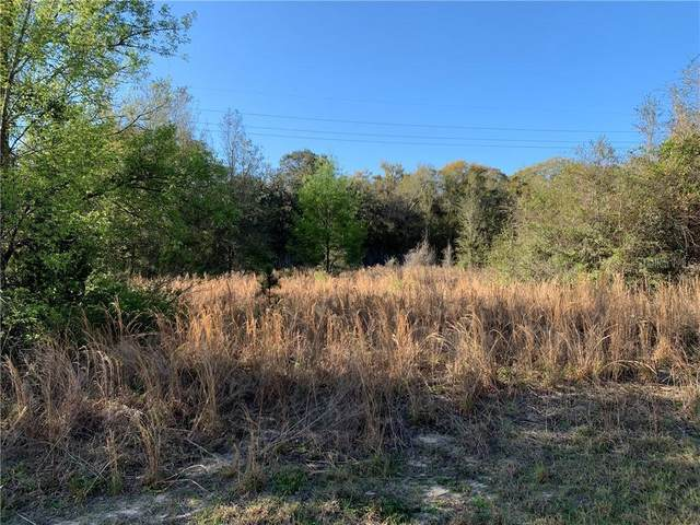 TBD Locust Loop Circle, Ocala, FL 34472 (MLS #OM616102) :: Premium Properties Real Estate Services