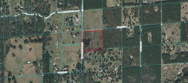 0 NW 167TH PLACE, Reddick, FL 32686 (MLS #OM616185) :: Premier Home Experts