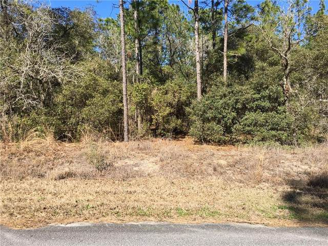 000 SE 130TH Court, Dunnellon, FL 34431 (MLS #OM616206) :: The Heidi Schrock Team