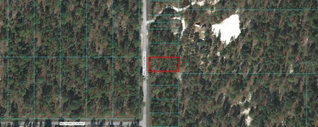 0 Nw Terrapin Drive, Dunnellon, FL 34431 (MLS #OM616208) :: Southern Associates Realty LLC