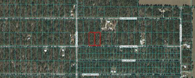TBD NW Columbine Avenue, Dunnellon, FL 34431 (MLS #OM616211) :: Bob Paulson with Vylla Home