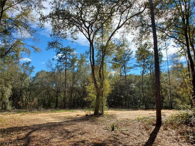 NE 145 Lane, Fort Mc Coy, FL 32134 (MLS #OM616243) :: Bob Paulson with Vylla Home