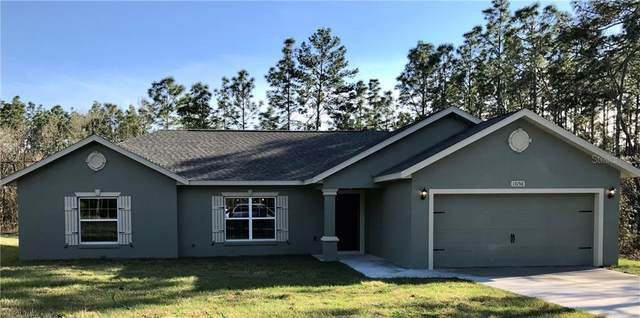 13156 SW 65TH Circle, Ocala, FL 34473 (MLS #OM616302) :: Sell & Buy Homes Realty Inc