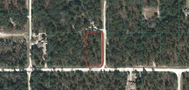 O SW 89 Street, Dunnellon, FL 34432 (MLS #OM616311) :: Southern Associates Realty LLC