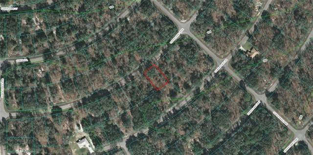 Fisher Lane Course, Ocklawaha, FL 32179 (MLS #OM616328) :: Pepine Realty