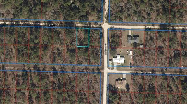 TBD NE 17TH Place, Williston, FL 32696 (MLS #OM616331) :: Pepine Realty