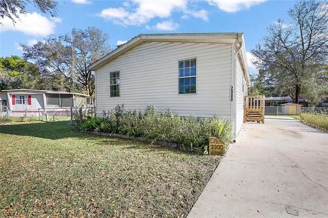 2900 SW 90TH Street, Ocala, FL 34476 (MLS #OM616541) :: Zarghami Group
