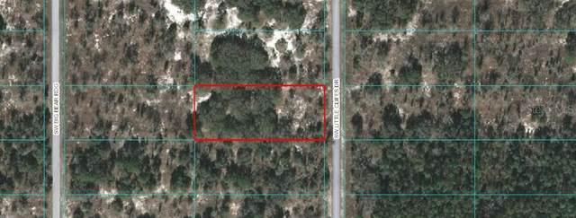 000 Sw Little Cliffs Dr, Dunnellon, FL 34431 (MLS #OM616632) :: Armel Real Estate