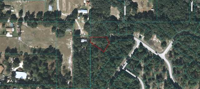 TBD Locust Drive Court, Ocala, FL 34472 (MLS #OM616666) :: Armel Real Estate