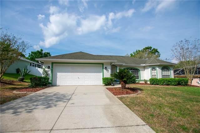 8904 N Travis Drive, Citrus Springs, FL 34434 (MLS #OM616942) :: CGY Realty