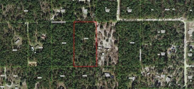 6930 W Sunmar Sample Lane, Dunnellon, FL 34433 (MLS #OM617037) :: Everlane Realty