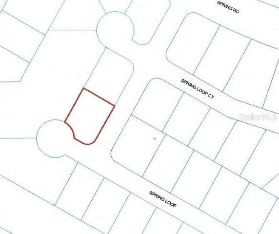 000 Spring Loop, Ocala, FL 34472 (MLS #OM617405) :: Armel Real Estate