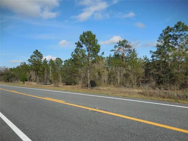 6650 SE State Road 121, Morriston, FL 32668 (MLS #OM617446) :: Dalton Wade Real Estate Group