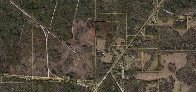 SW Carber Rd, Mayo, FL 32066 (MLS #OM617491) :: Premier Home Experts