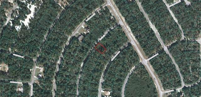 Fisher Trail, Ocklawaha, FL 32179 (MLS #OM617601) :: Rabell Realty Group