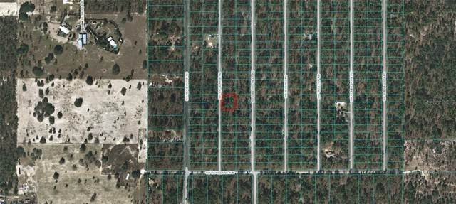 Sw Sycamore Rd, Dunnellon, FL 34431 (MLS #OM617605) :: The Heidi Schrock Team