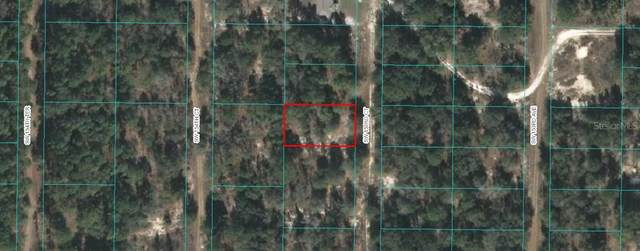tbd SW 153RD Court, Ocala, FL 34481 (MLS #OM617608) :: Bob Paulson with Vylla Home