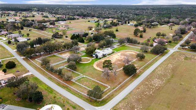 655 N Cherry Pop Drive, Inverness, FL 34453 (MLS #OM617673) :: Griffin Group