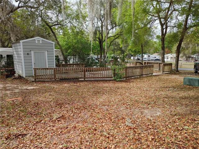 14403 NE 252ND COURT Road, Salt Springs, FL 32134 (MLS #OM617761) :: Southern Associates Realty LLC